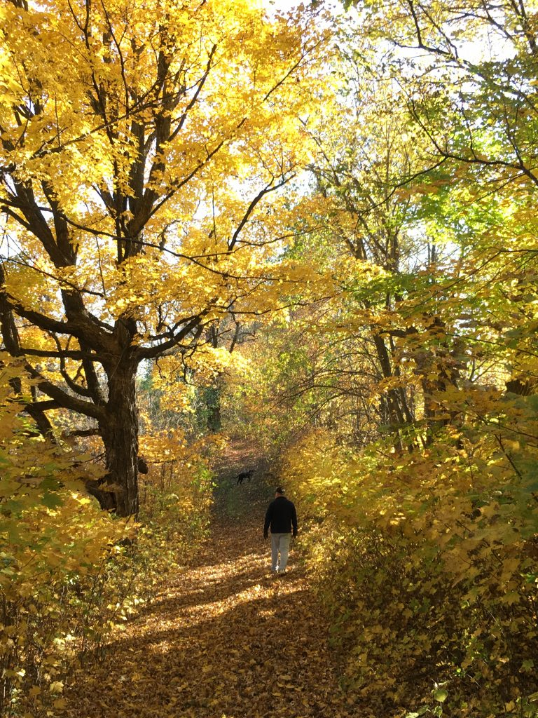 Fall in Laketown